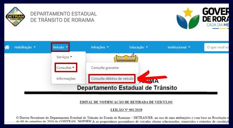 Consulta Multas Roraima
